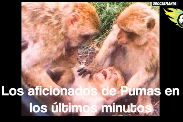 Screen Shot 2015-11-30 at 9.35.58 AM